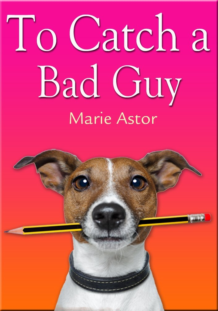 To Catch a Bad Guy by Marie Astor