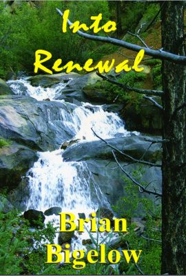 Into Renewal by Brian Bigelow